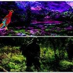 好き好きアーツ!#34 鳥飼否宇 part12   –桃源郷の惨劇&密林–